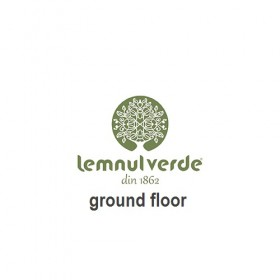 Lemnul Verde, ground floor